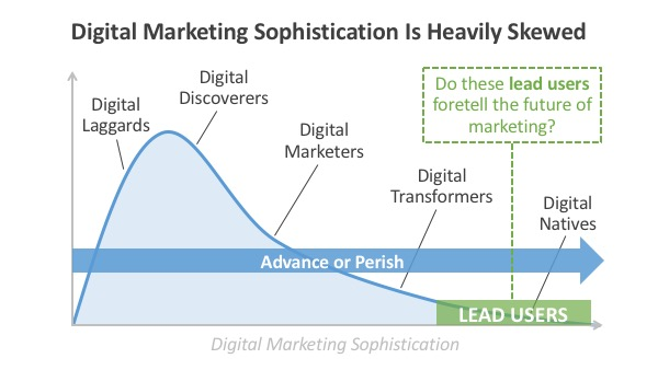 Skewed Digital Marketing Sophistication
